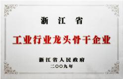 """2009年被浙江省人民政府授予<br/>""""浙江省工业行业龙头骨干企业"""""""